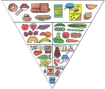 food guide pyramic copy